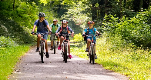 Hamsterley Forest - bike ride